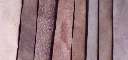 Rudbeckia dye samples