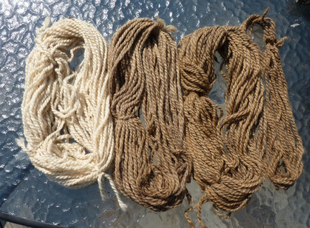 dyed and rinsed yarn