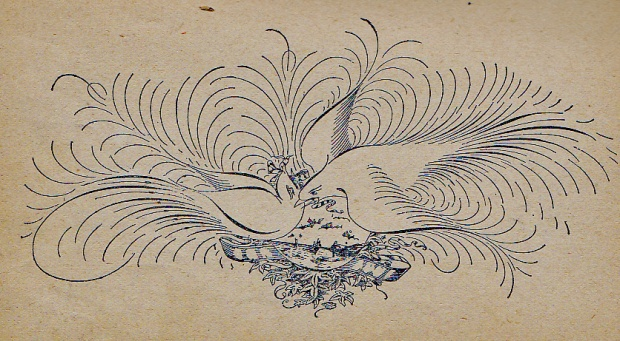 1894 ornamental pen drawing