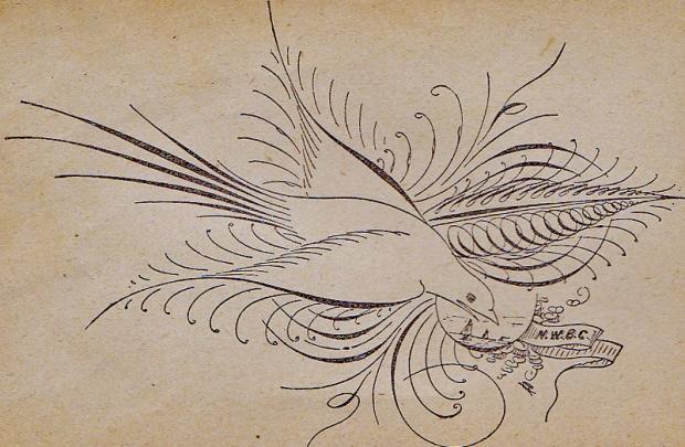 1894 ornamental pen drawing