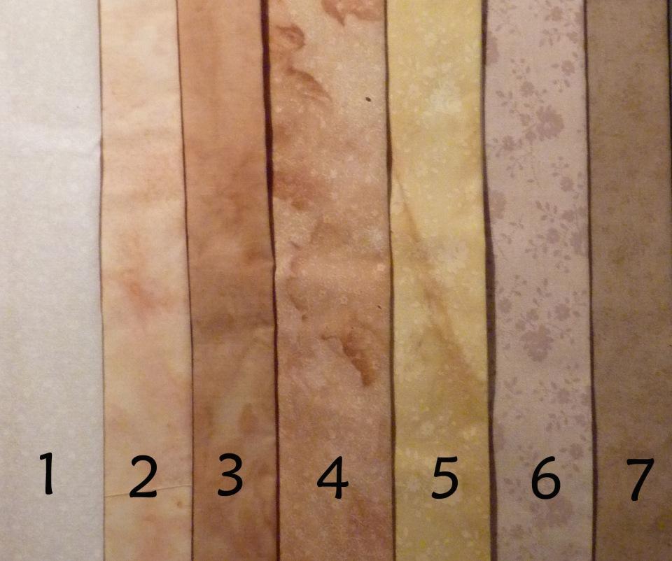 dye samples of grapevine and gaillardia