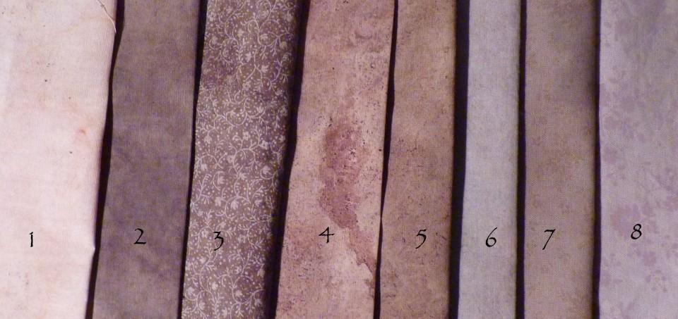 rudbeckia samples
