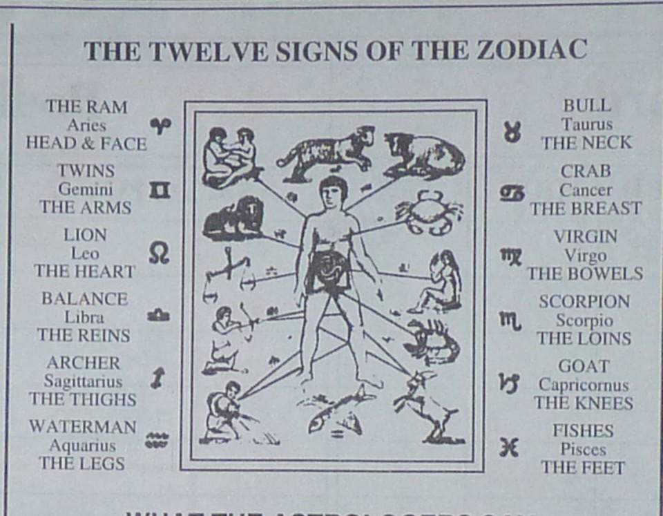 diagram of zodiac