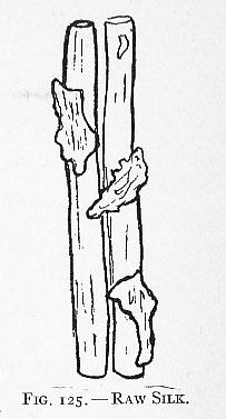 raw silk diagram
