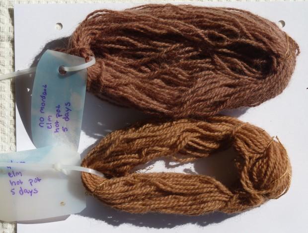 elm dye samples