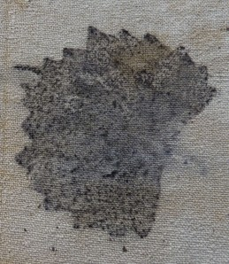 grape leaf print