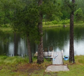 rain on pond