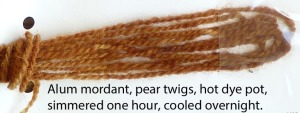 The pear dye was a lot of work - the twigs had to be soaked for days.  But this is a nice rosy brown, so worth the work.