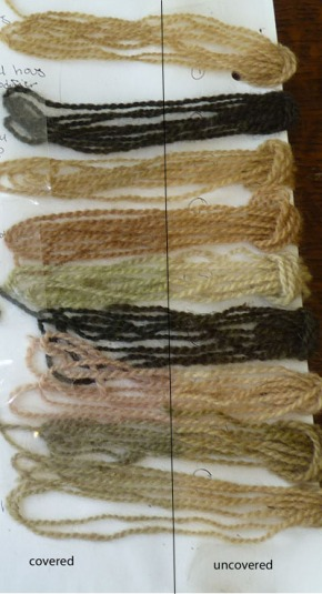 dye samples