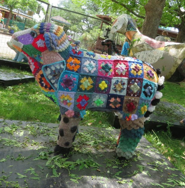Too Cool for Wool, by Sara Allen.  Part of the 2015 Zoo Revue at the Austin Zoo.