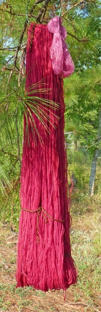 Pokeberry-dyed yarn.
