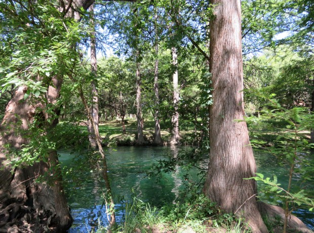 Spring fed Blue Hole in Wimberley.